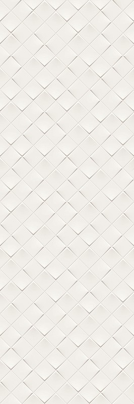 MONOCHROME MAGIC 40X120 DÉCOR WHITE MATT